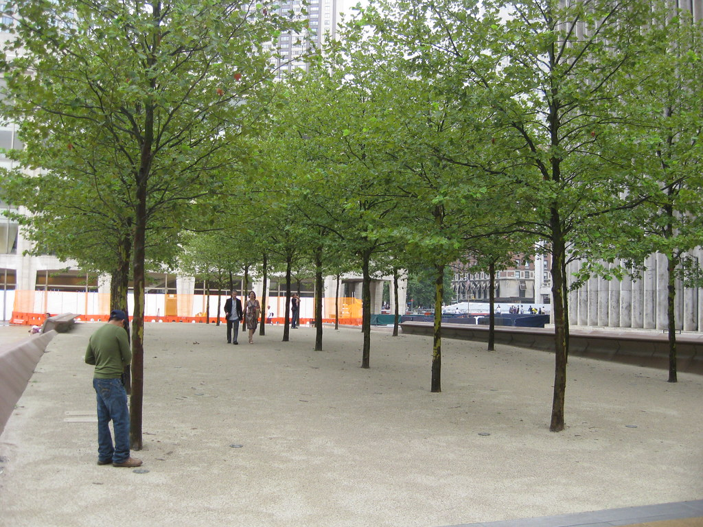 The Trees Of Lincoln Center Bosque New York City New Yor