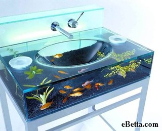 fish tank !? | by Mikefishing2010