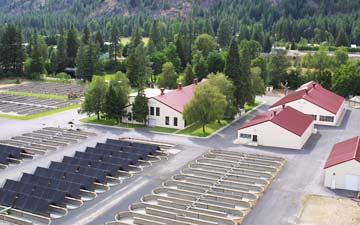 Leavenworth national fish hatchery an aerial view of for Fish hatchery jobs