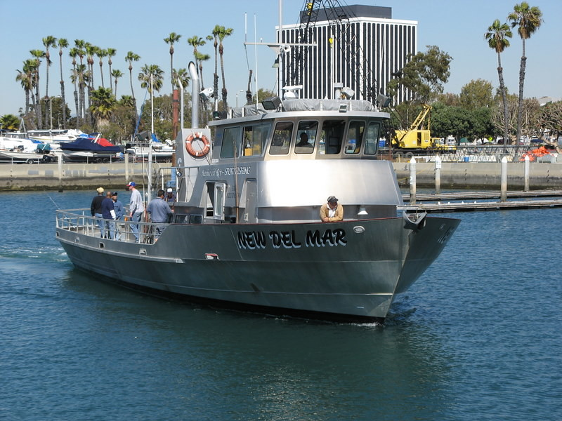 marina del rey sportfishing fishing trips are fun and