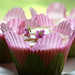 Pink Fairy Cupcakes