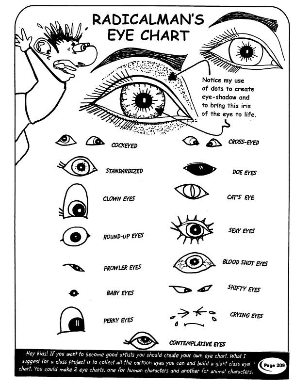 Cat 5 Chart
