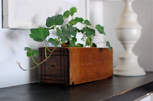 the vintage drawer i turned into a flower pot | by life made lovely