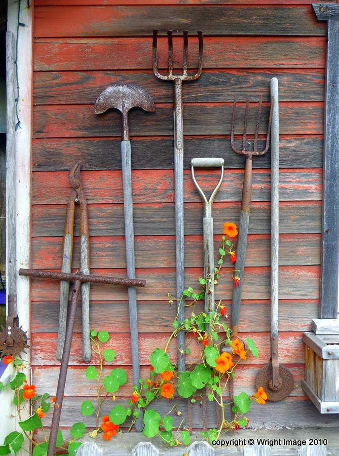Rusty garden tools kimberley renee flickr for Gardening tools 4 letters