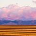 Boulder County Farm Fields At First Light Sunrise