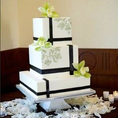 modern square wedding cake designs black amp white square with orchids delisle flickr 17468