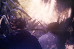 Filippo & Rose by Keitha Haycock [rambling woman]