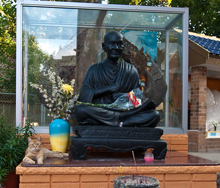 Stray and Buddha: Elmhurst Queens | by Chris Arnade