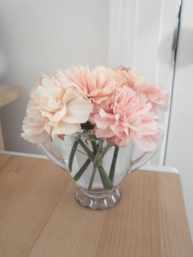 i like simple peachy pink carnations | by caitlin is nice