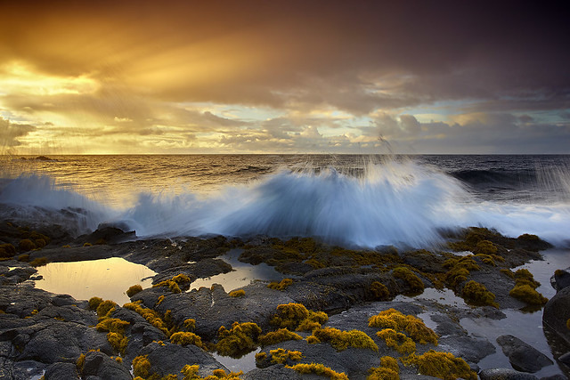 First Light at Ahalanui - Puna Coast, Big Island, Hawaii