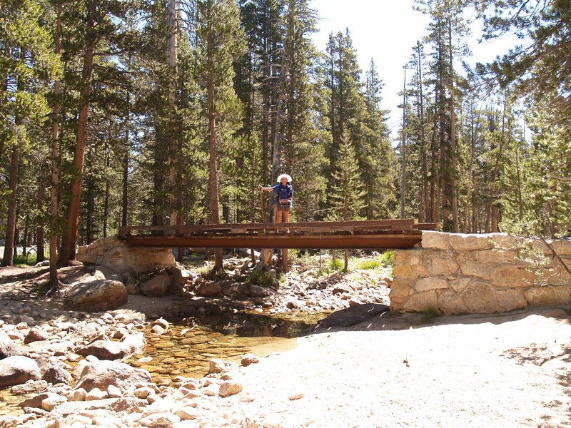 The foot bridge over Rafferty Creek on the PCT in Lyell Canyon