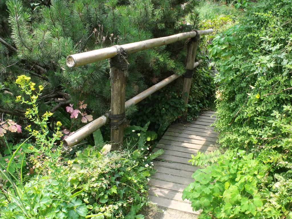 Giardino botanico fondazione andre heller gardone rivi for Giardino 3d gratis italiano