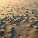 Sand detail, Rockaway Beach, Oregon