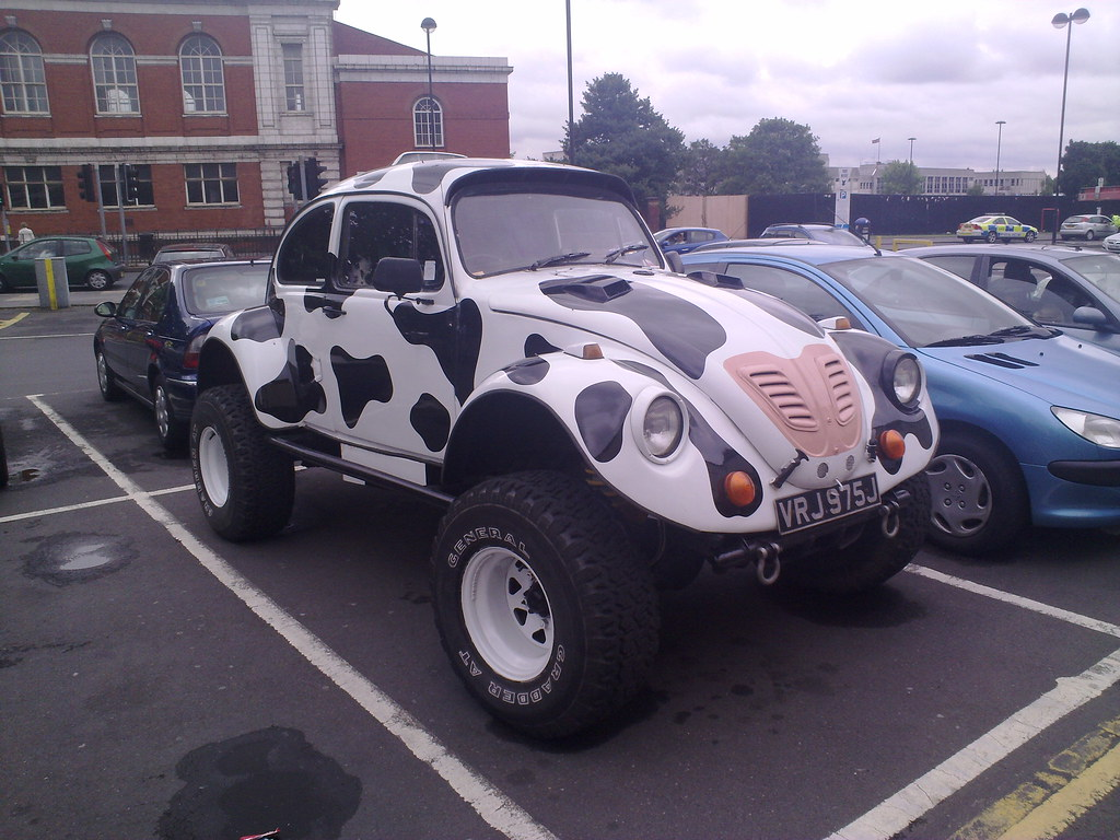 Vw Beetle 4x4 Cow Car Note The Pink Nose On The Front