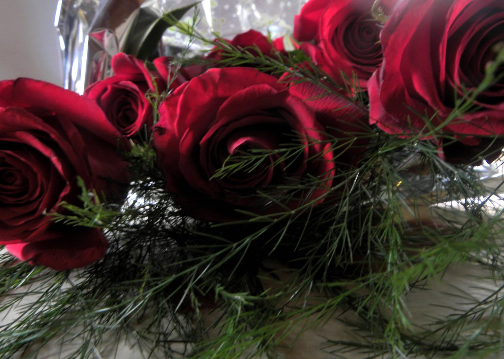 Rosas Rojas Miriam Flickr