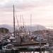 Sitka Harbor @ 10:00 pm