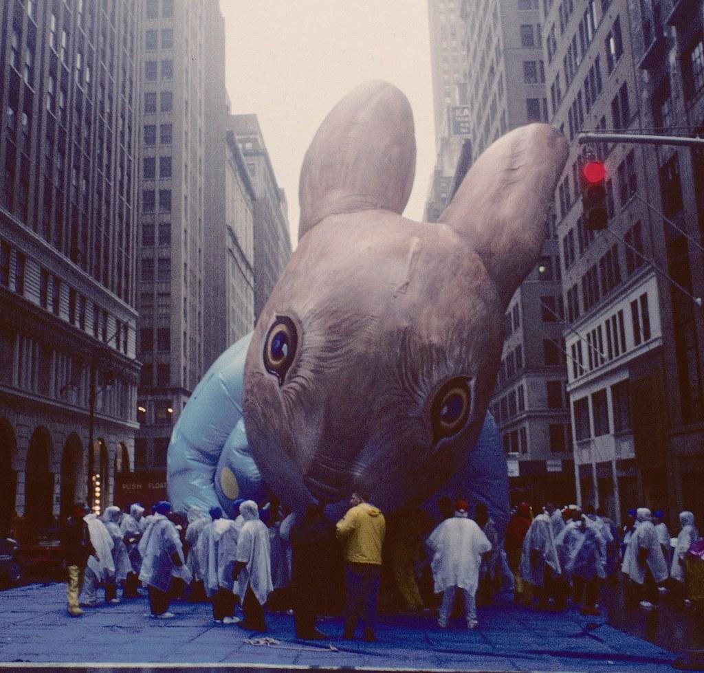 Rabbit on Seventh Avenue   by stevensiegel260