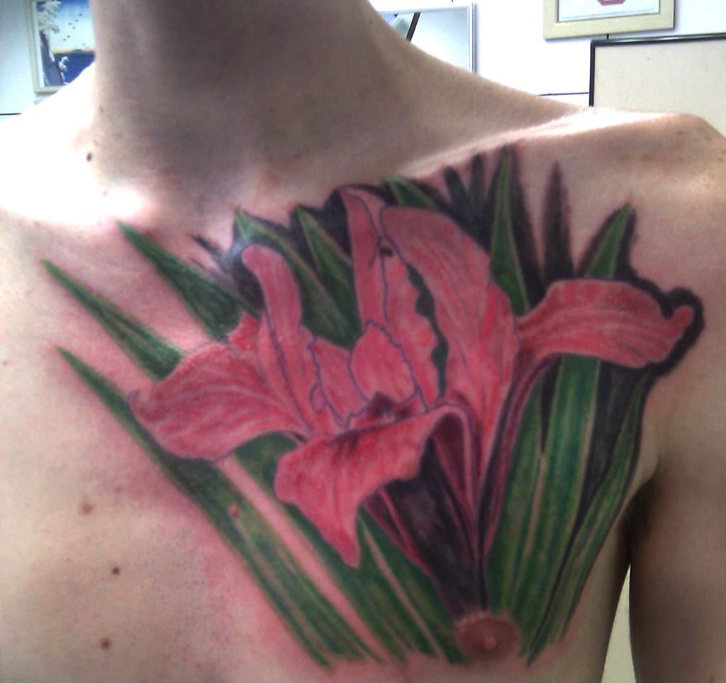 Tatuagem Iris Flower Tattoo Primeira Sesso Ainda Falta A Flickr
