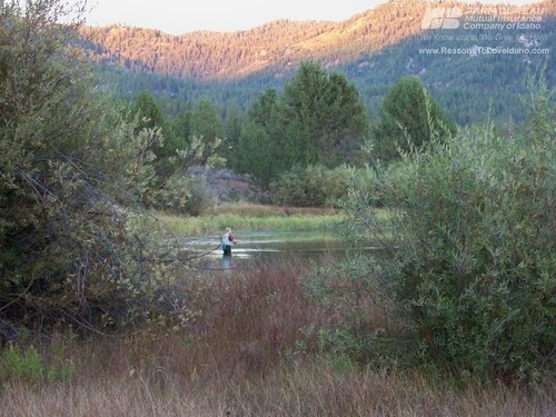 how to find trout in a reservoir