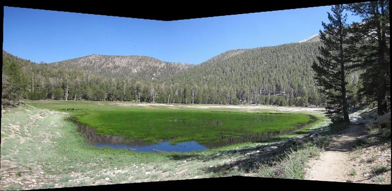 Dry Lake looking rather wet this year