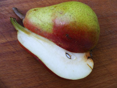 Pears-Fruit-Long-Cut_15889-480x360 | by Public Domain Photos