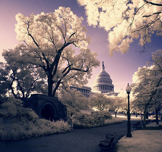 Capitol Exposure | by zachstern