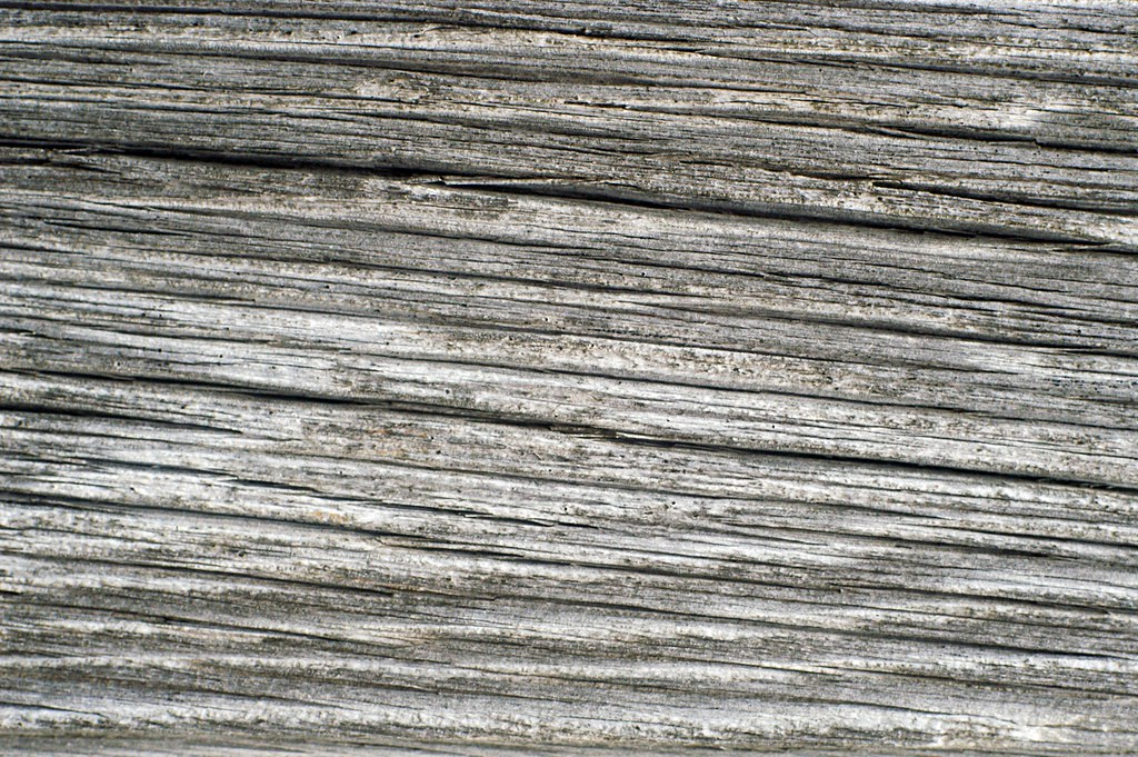 Barn Wood Texture old barn wood texture | i have a few more from my walk behin… | flickr