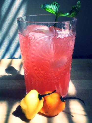 Watermelon Habanero Lemonade | by Jennifer Hope