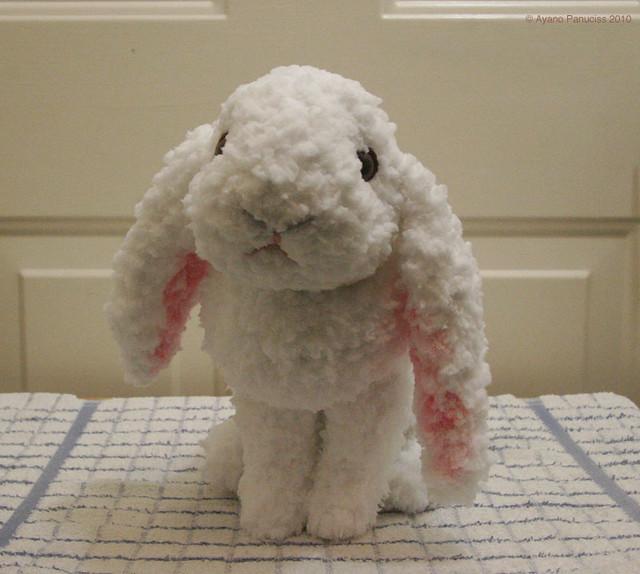 amigurumi Holland lop bunny 1 Flickr - Photo Sharing!