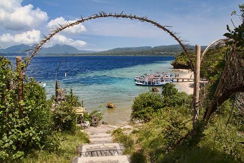 Komodo Island Tours From Labuan Bajo