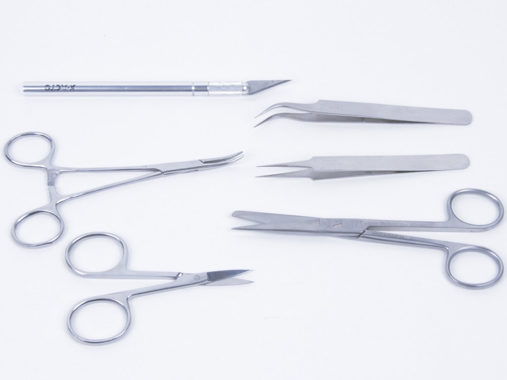 Tools And Equipment Used In Cake Decorating