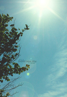 45/365 It's A Brand New Day | by jaaanet ♫