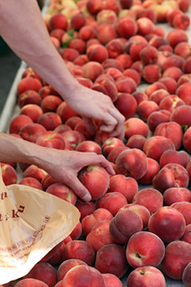 selecting peaches | by David Lebovitz