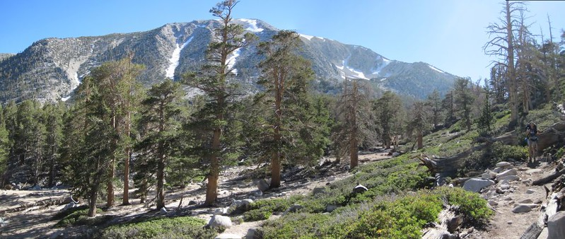 Looking up at San Gorgonio Mountain as we hike down the trail to Mineshaft Flat.