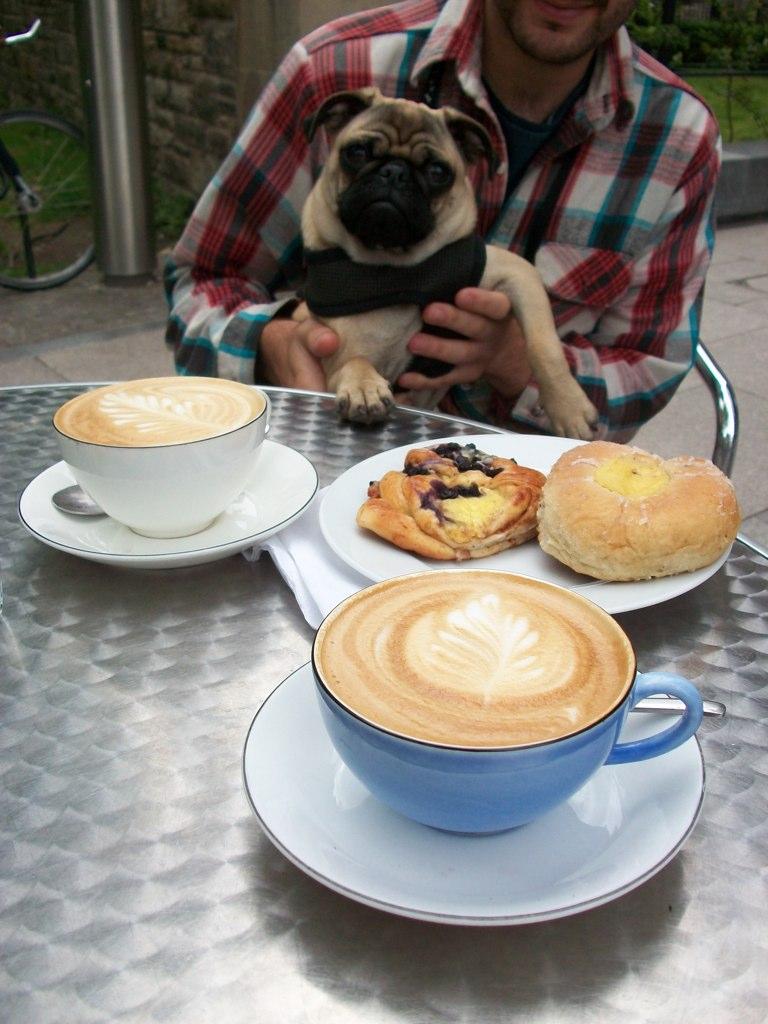 Swedish cafe edinburgh