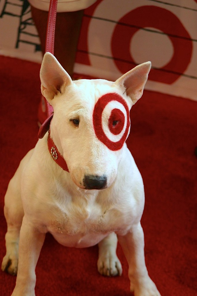 Target Dog : o.m.g. : Rachel Scroggins : Flickr
