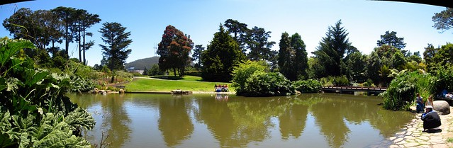 Botanical Garden In Golden Gate Park Botanical Garden In G Flickr Photo Sharing