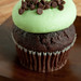 Mint Chocolate Chip cupcake by James Tanksley