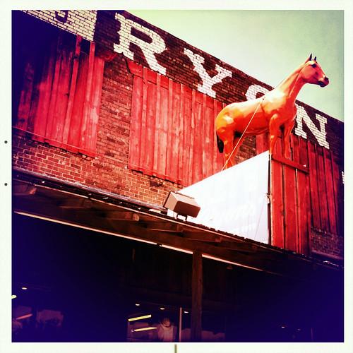 Ryon Saddle Ranch Supply Stockyards Historic Fort Worth Te