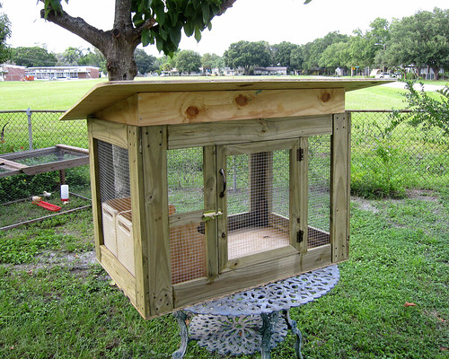 Small chicken coop for Small chicken house plans