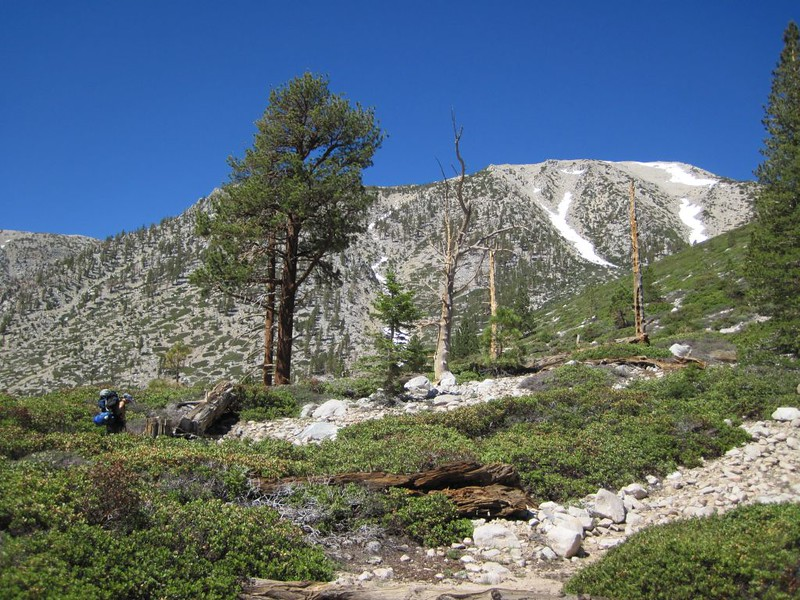 Hiking up to Fish Creek Saddle on the North Fork Meadows Trail