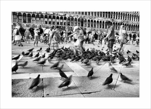 St. Mark's Square (Piazza San Marco) | by cezzar1981