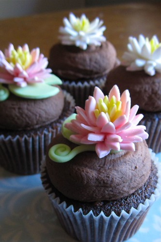 lilly cupcakes | by HausOfCake