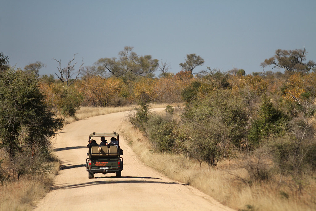 Safari In South Africa A Game Viewing Vehicle Drives