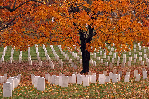 Arlington National Cemetery in fall | by ianseanlivingston
