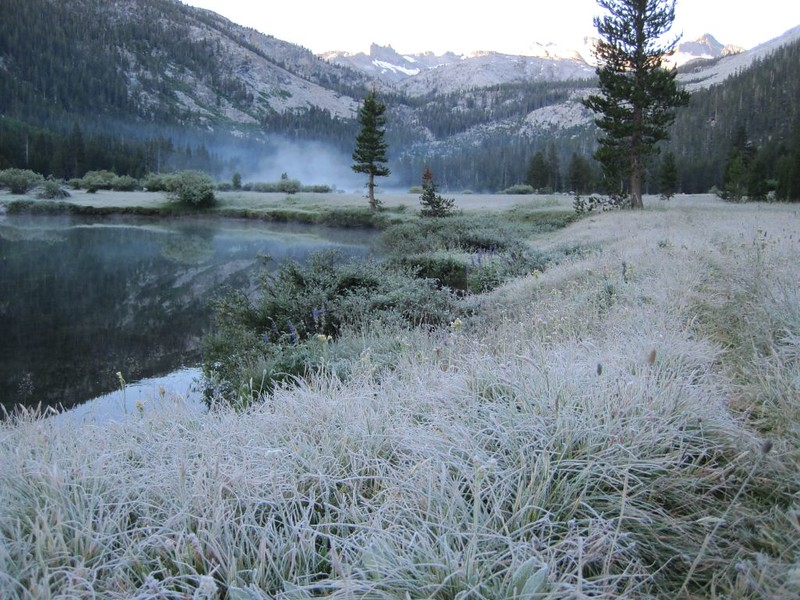 A frosty meadow and a misty Tuolumne River at dawn