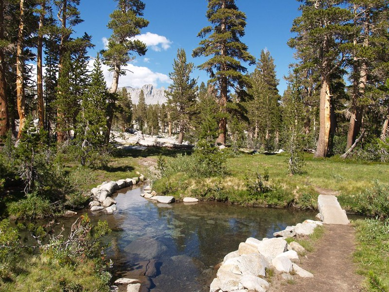 Peaceful stream crossing and tiny stone bridge on the PCT