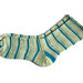 warden bay socks