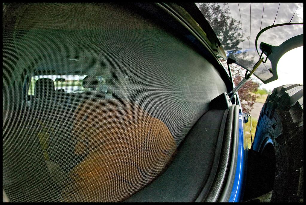 Fj Rear Window Screen Preview Of The Rear Window Screen