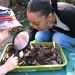 Discovery Garden Workshop